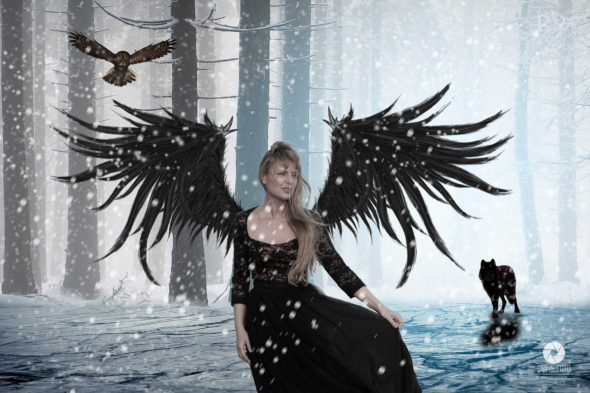 The_Winged_Girl_Photoshop_Manipulation_Tutorial_CiprianFOTO