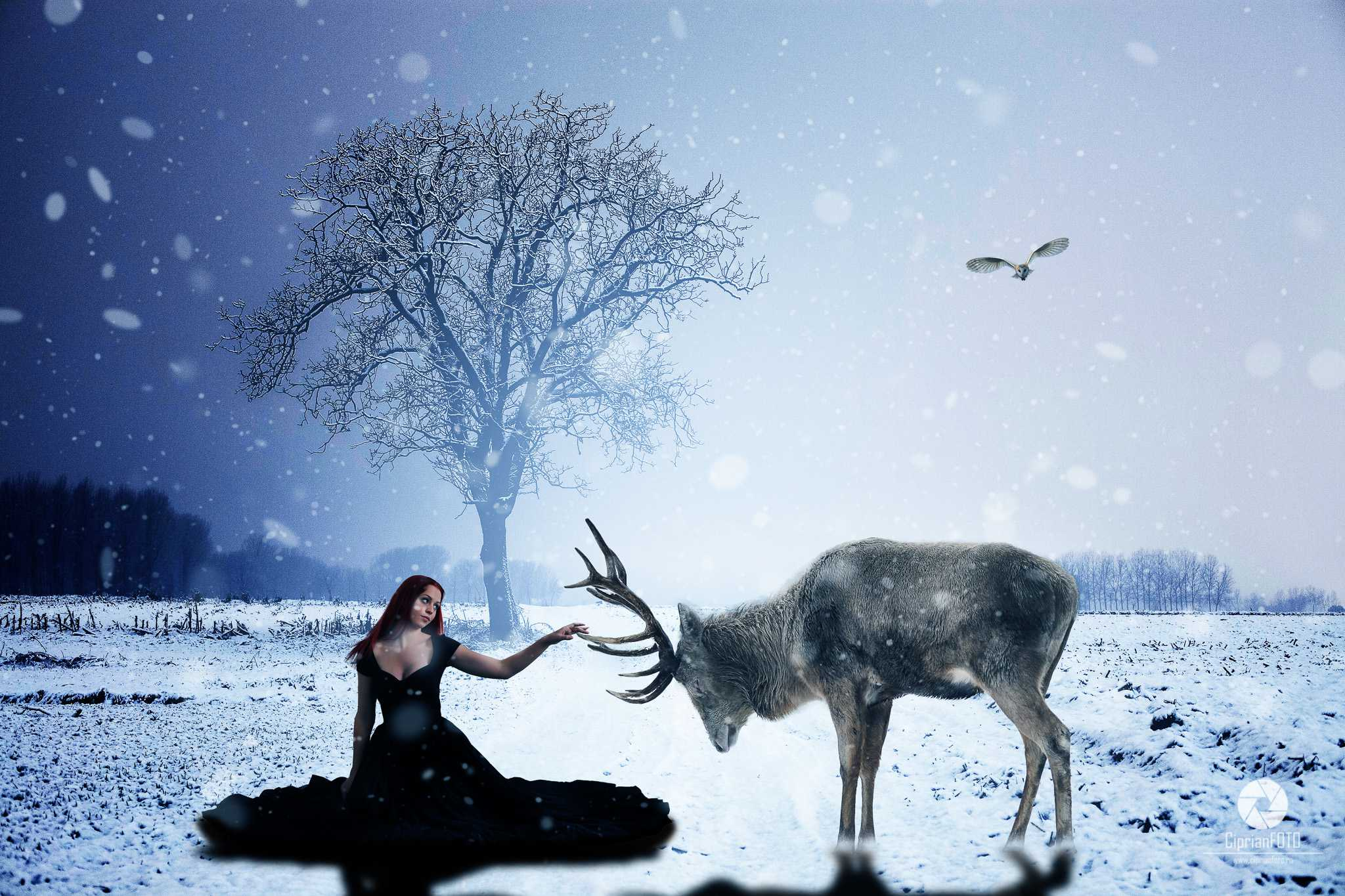 Girl And Deer, Photoshop Manipulation Tutorial, CiprianFOTO