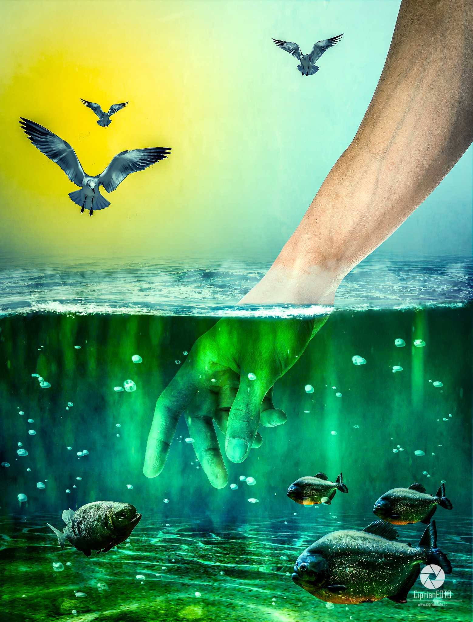 The Hand That Tames Piranha, Photoshop Manipulation Tutorial, CiprianFOTO