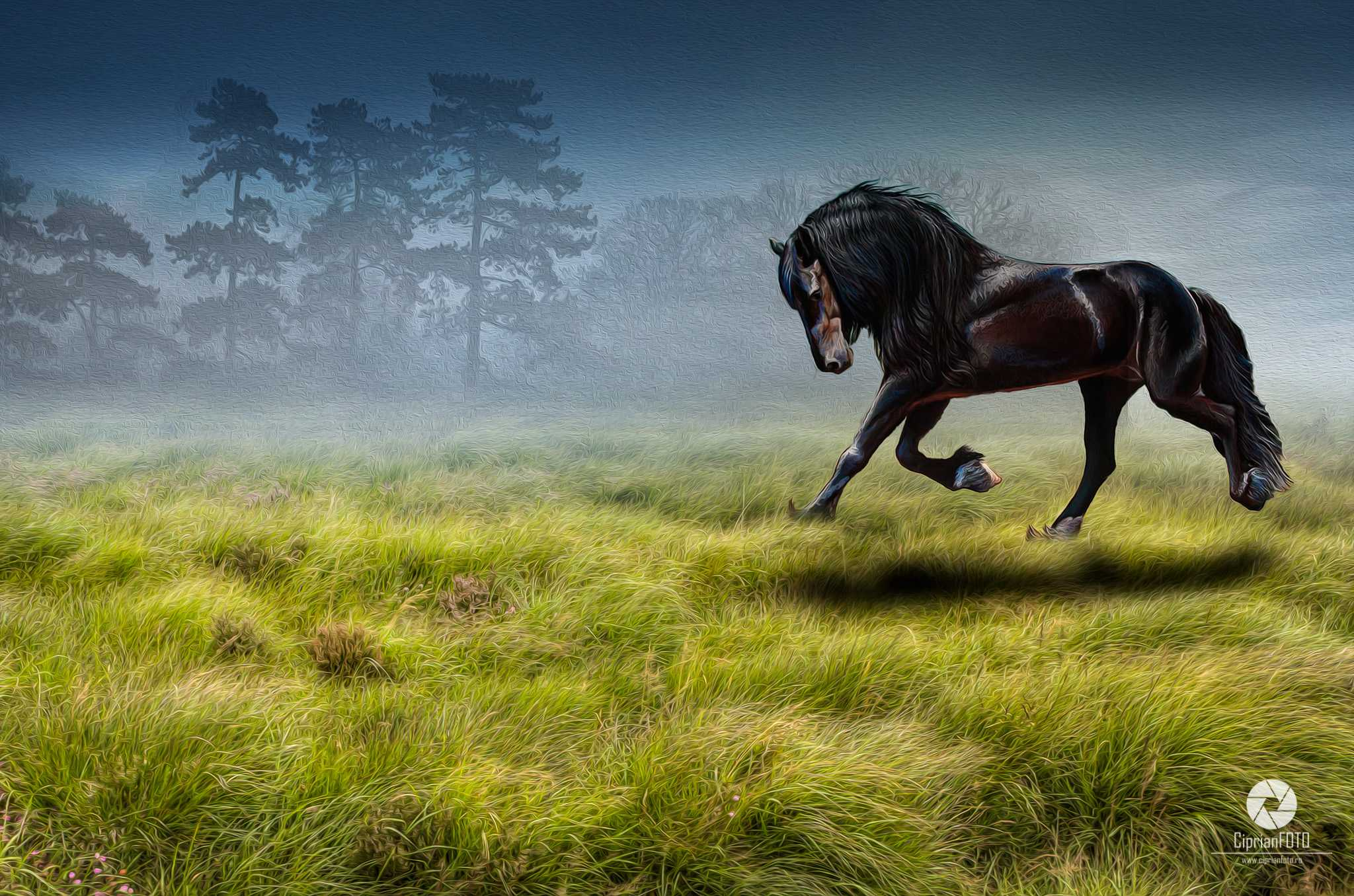 Horse Power, Photoshop Manipulation Tutorial, CiprianFOTO