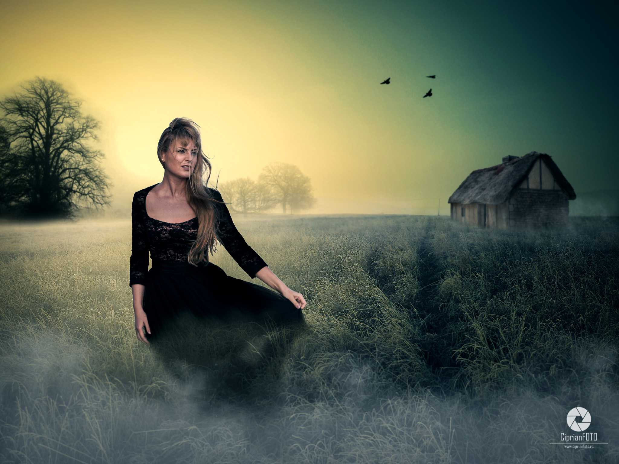 Girl_On_The_Field_Photoshop_Manipulation_Tutorial_CiprianFOTO