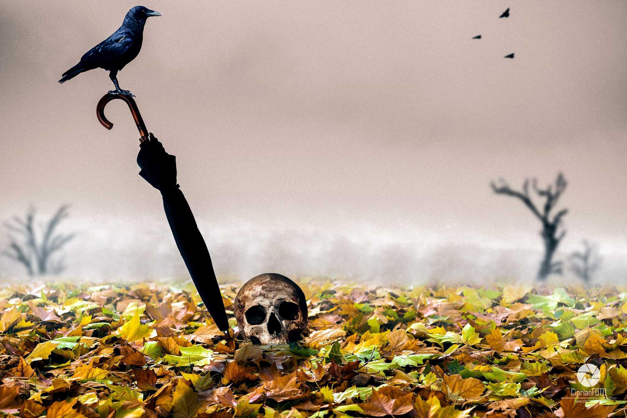 Lost_Umbrella_Photoshop_Manipulation_Tutorial_CiprianFOTO