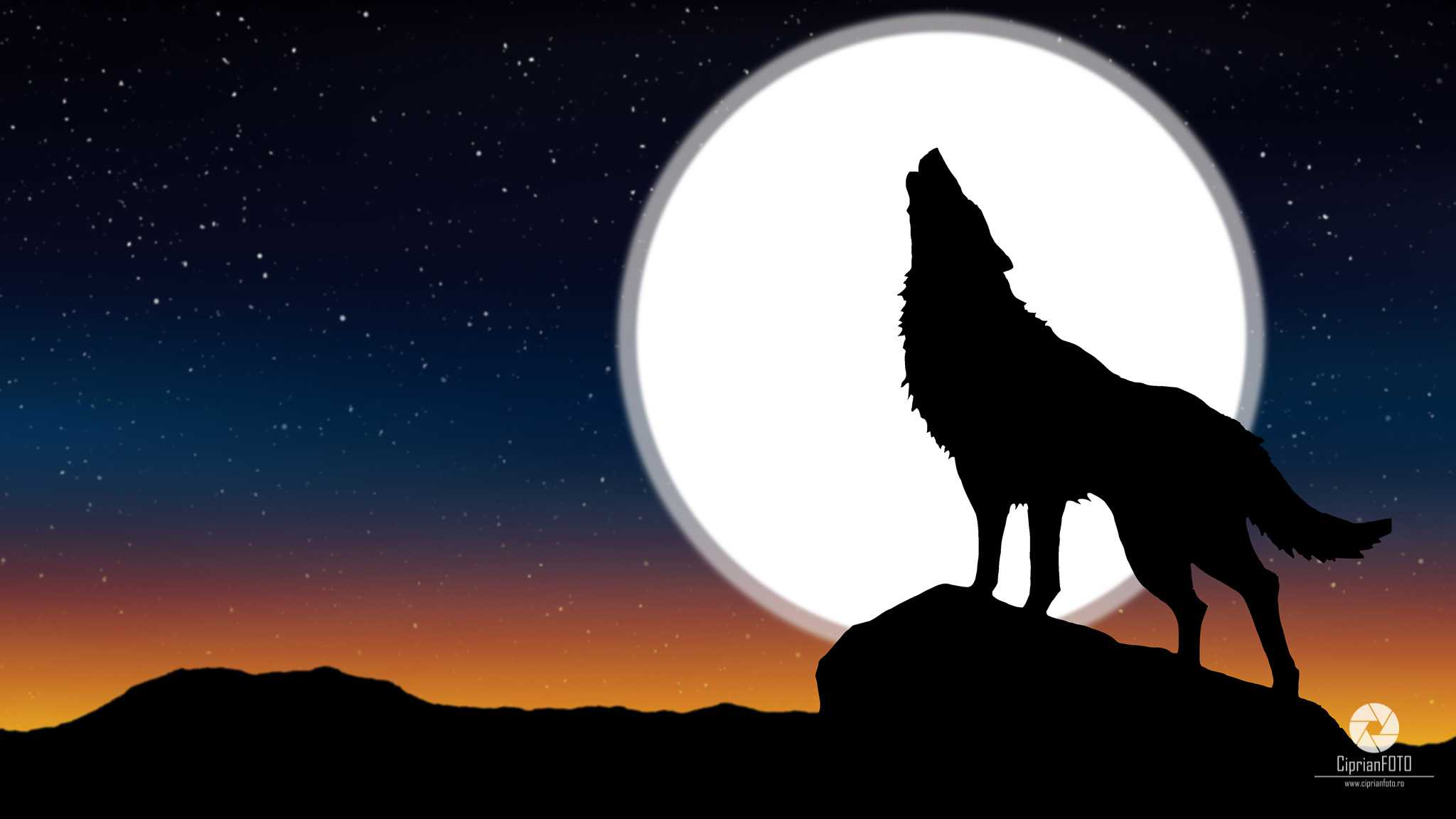 Howling The Wolf At The Moon, Photoshop Manipulation Tutorial, CiprianFOTO