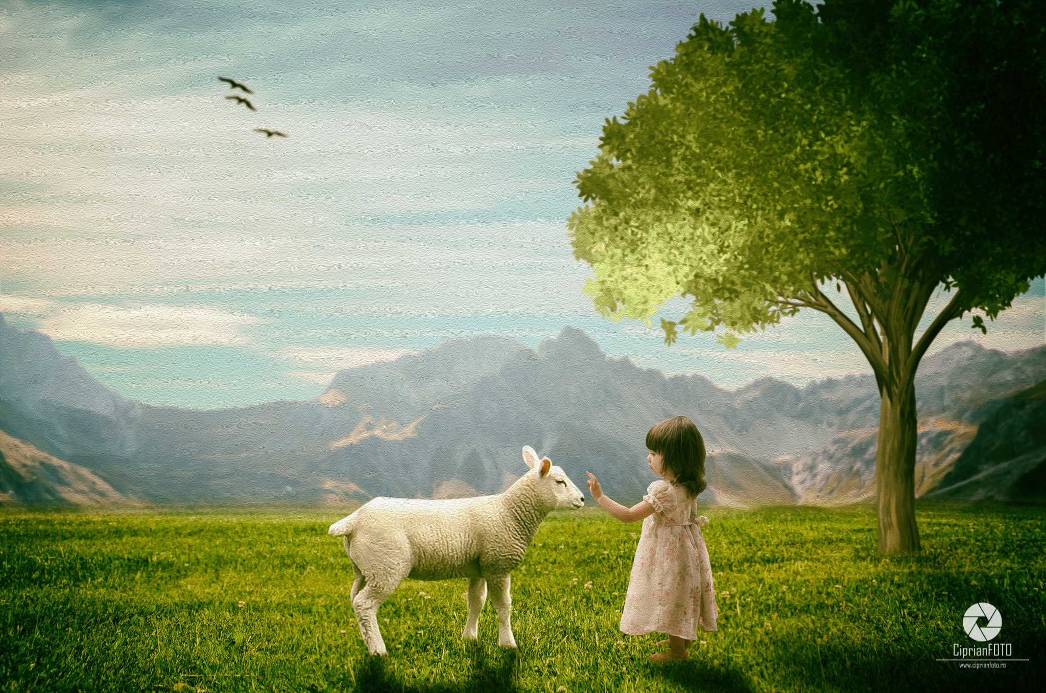 Little Girl And Sheep, Photoshop Manipulation Tutorial, CiprianFOTO