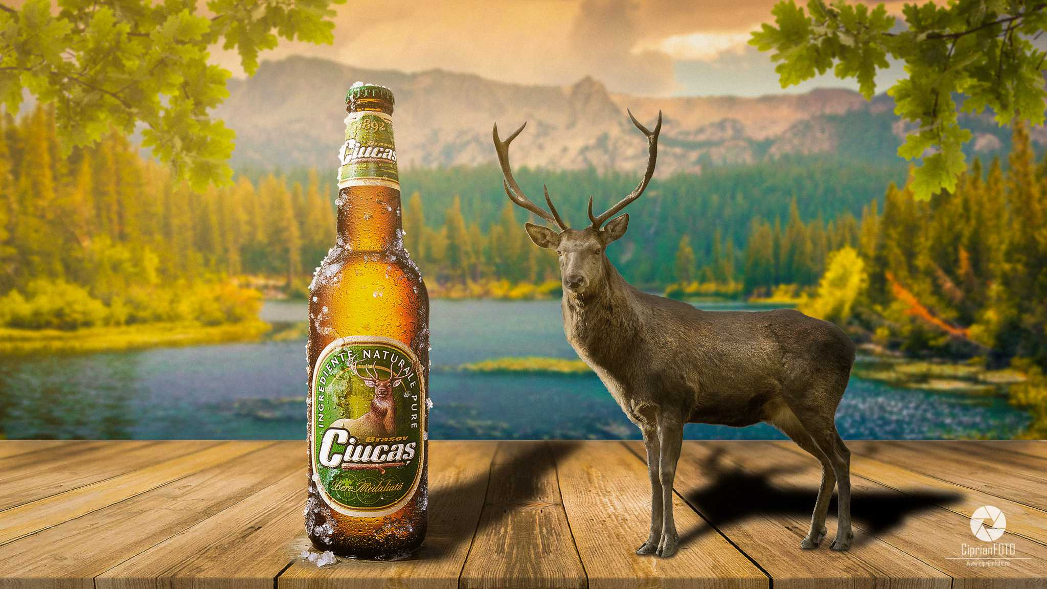 Ciucas Beer And Deer, Photoshop Manipulation Tutorial, CiprianFOTO
