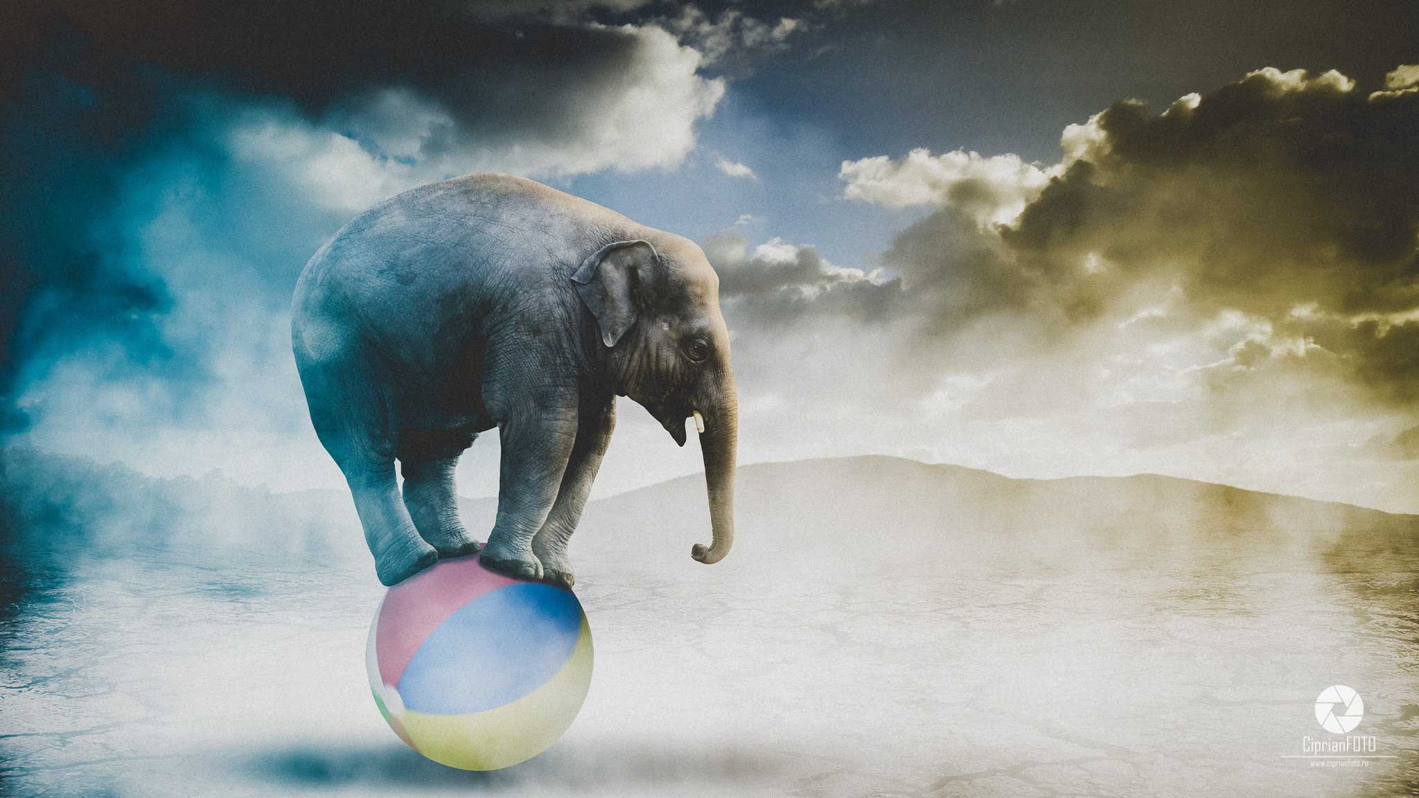 Elephant Playing With The Ball, Photoshop Manipulation Tutorial, CiprianFOTO