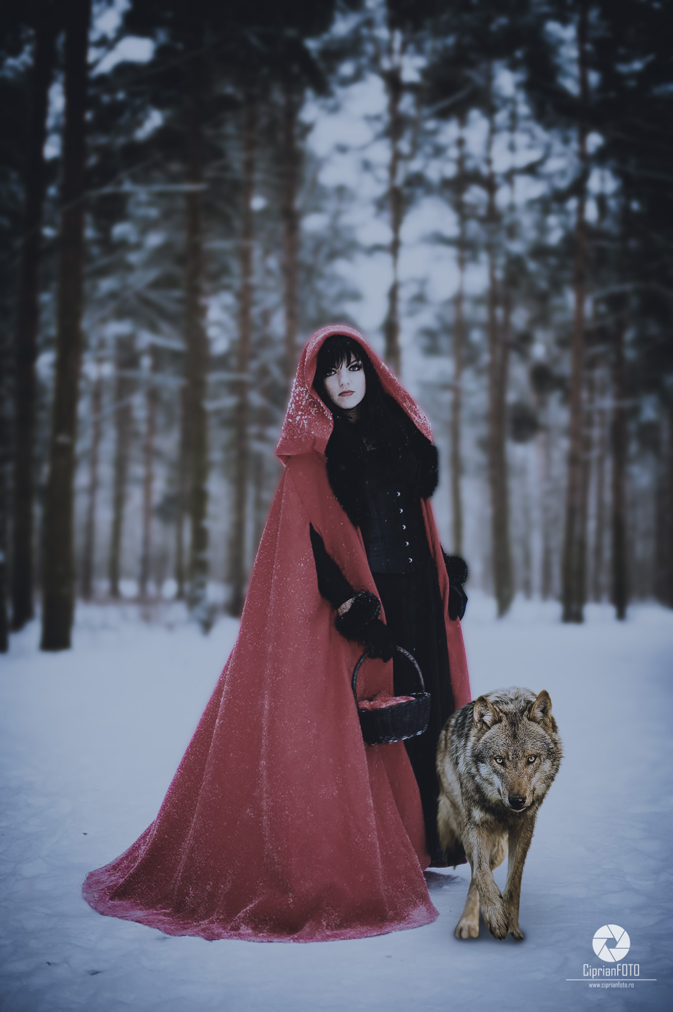 Red Riding Hood And Wolf, Photoshop Manipulation Tutorial, CiprianFOTO