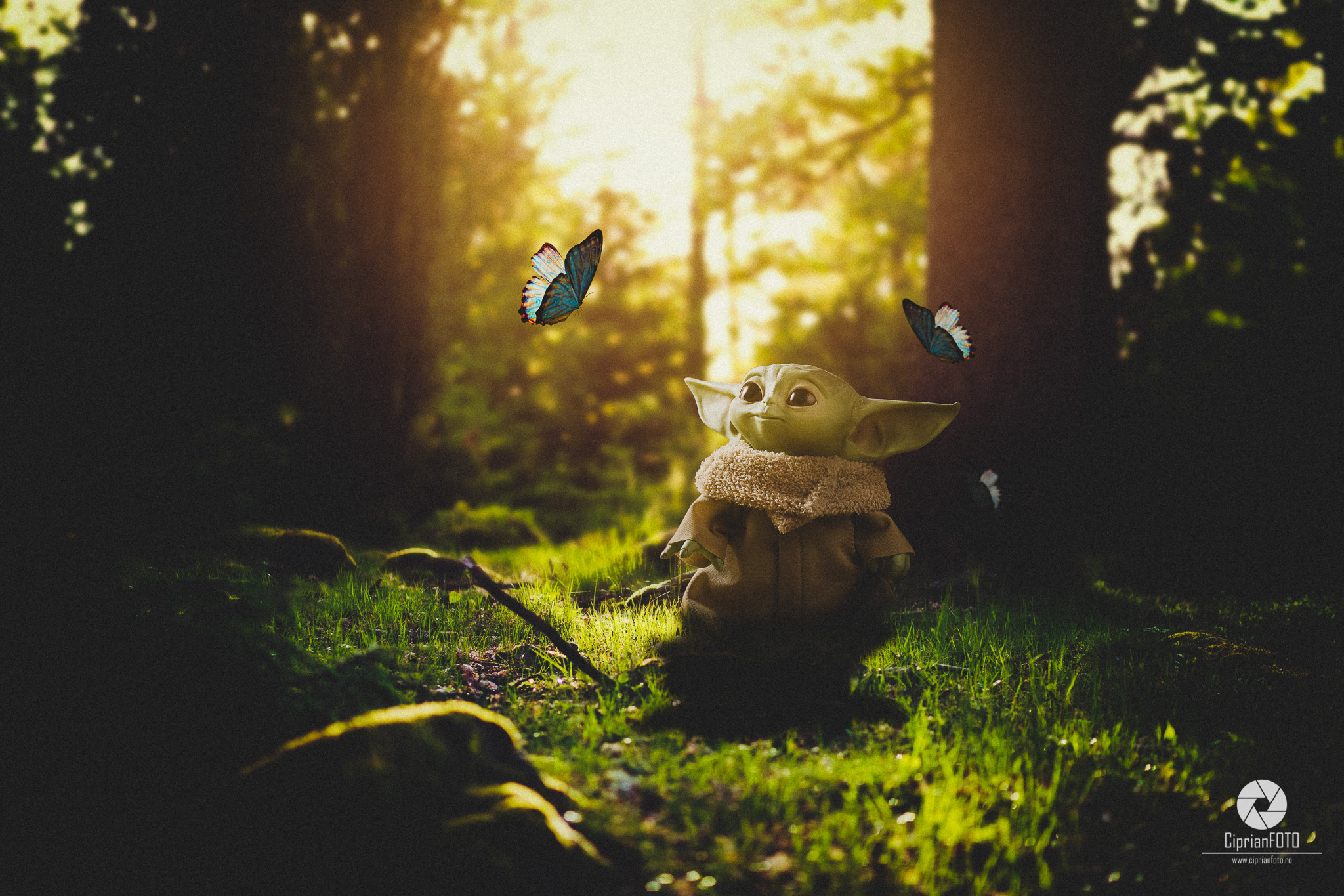 Baby Yoda, Fantasy Fine Art Scene, Photoshop Manipulation Tutorial, CiprianFOTO