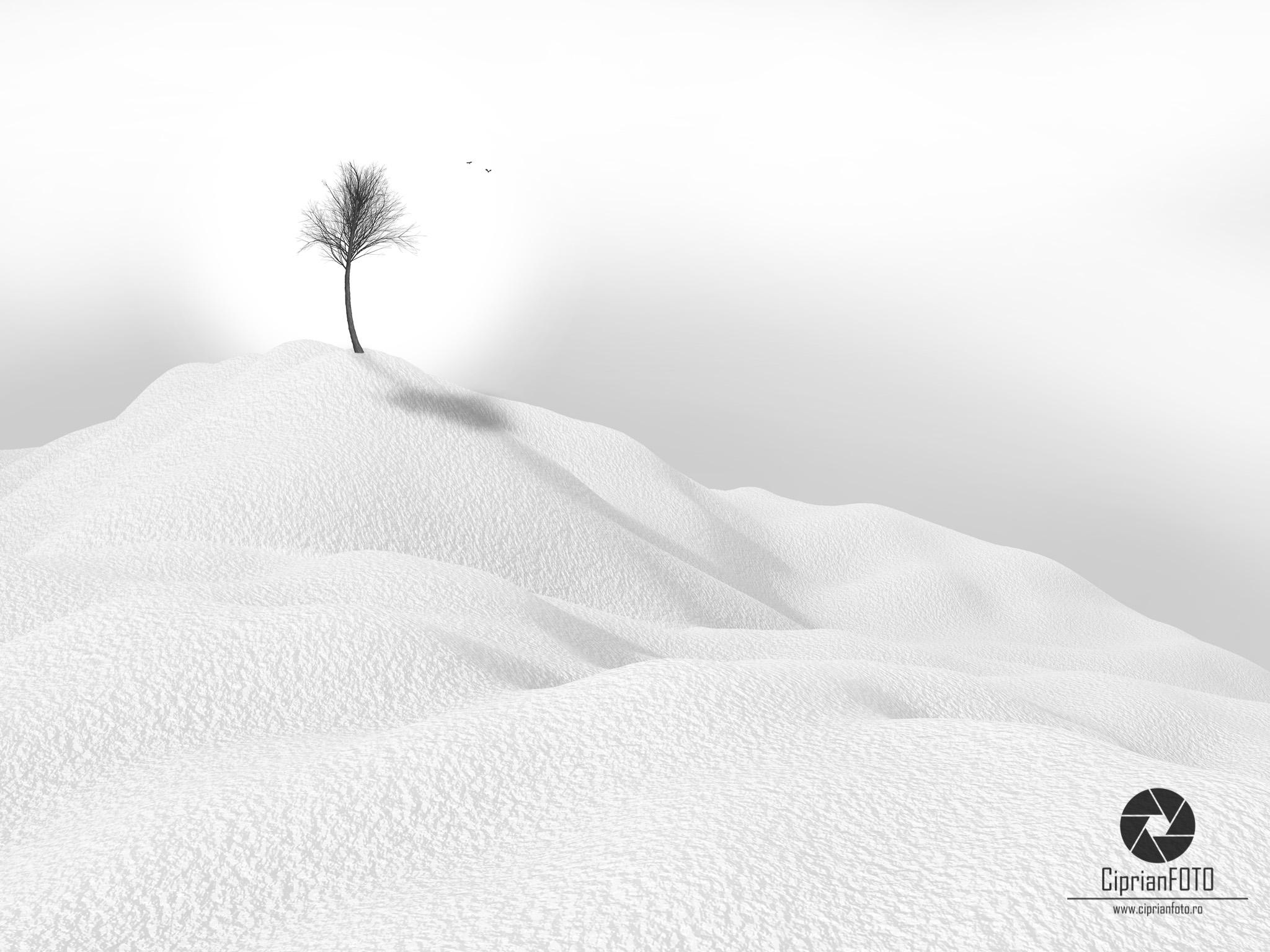 Learn How To Create A Minimalist Winter Landscape In Photoshop CC 2021, Photoshop Manipulation Tutorial, CiprianFOTO, Photoshop Tutorial